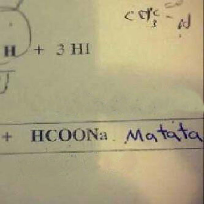 test-answers-that-are-totally-wrong-but-still-genius (9)