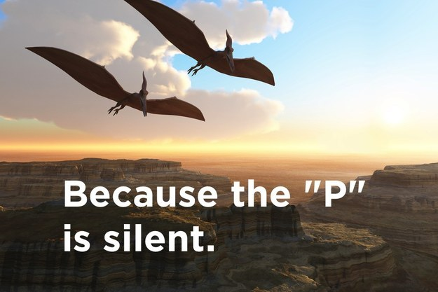 Why can't you hear a pterodactyl going to the bathroom?