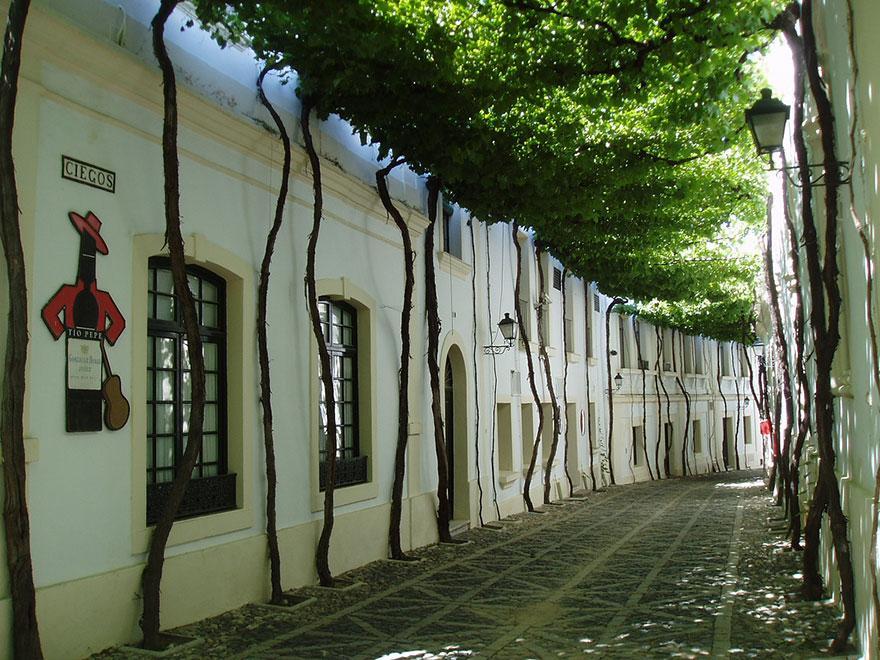 10 - Street in Jerez Spain