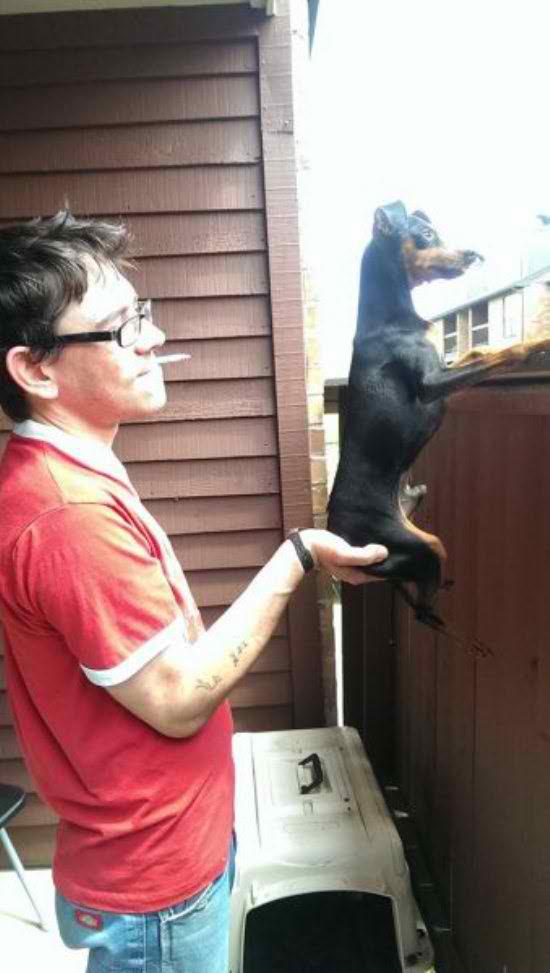 life-ruff-get-dog-271