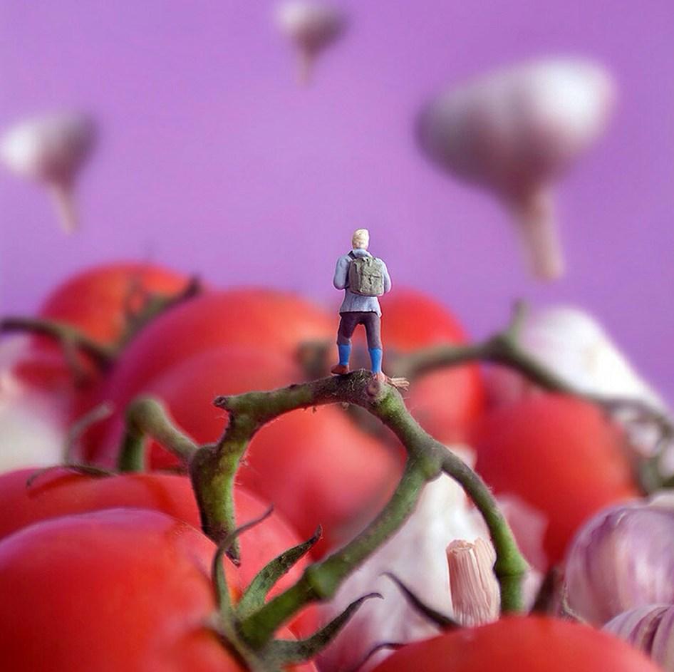 minimize-food-miniature-diorama-william-kass-15