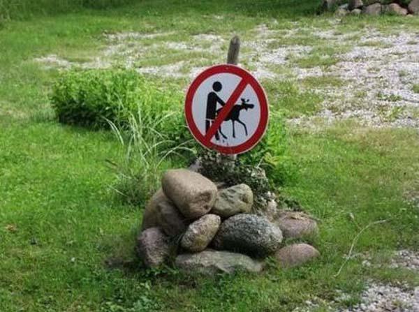 warning-signs37