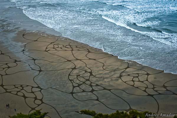 beach art12