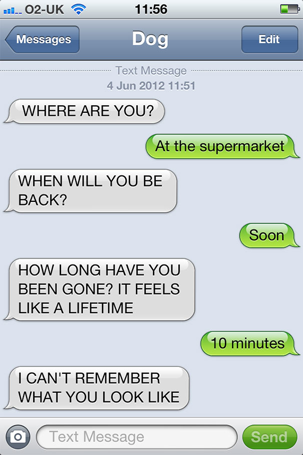 texts-from-dog-26