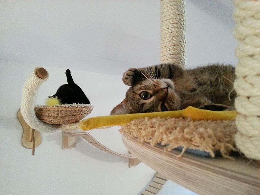 cat-furniture-creative-design-37