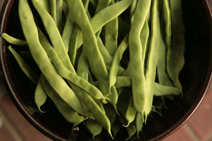 cool-plants-lawn-Roman-beans