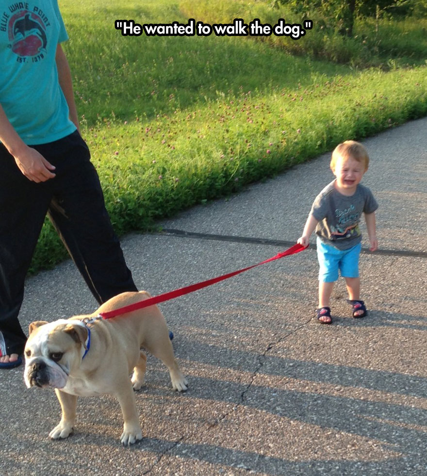 funny-baby-crying-walking-dog