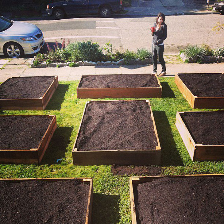 cool-plants-lawn-compost