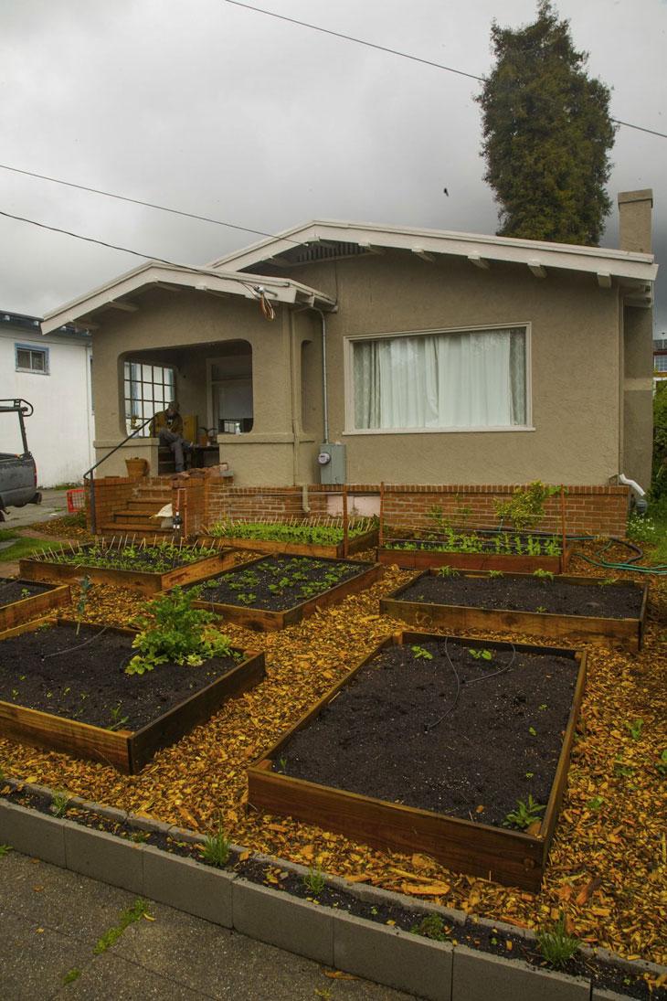 cool-plants-lawn-compost-house