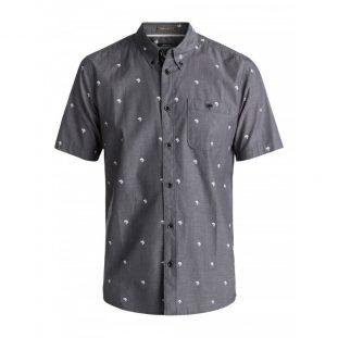 shirt sleeve polo